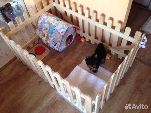Загон для собаки в квартире