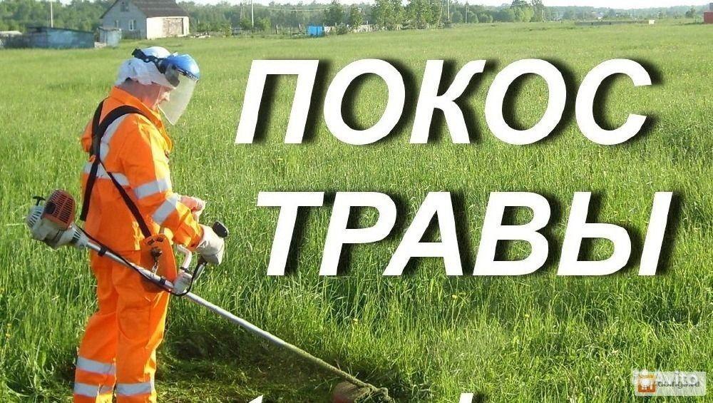 Инструкция по охране труда для косильщика травы