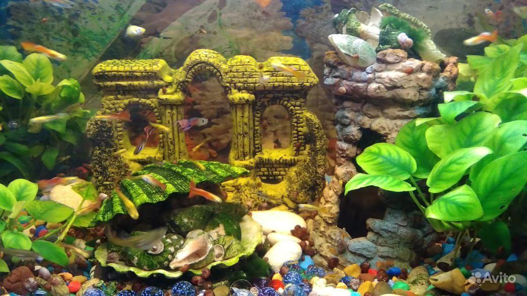 Продам аквариум на 70 литров