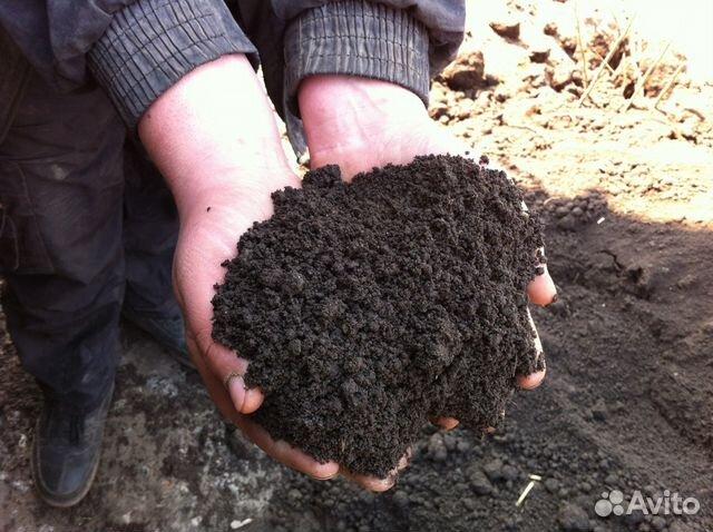 Купить садовую землю, торф в калязине отечественные строительные материалы производители