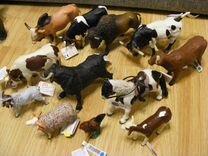 Животные Фирмы раро